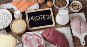 hollandandbarrett protein